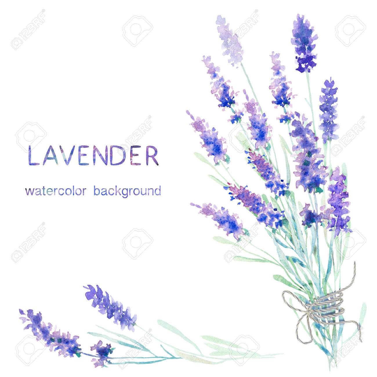 Watercolor lavender background. Card, greeting cards, invitations, and other printing projects template. Watercolor illustration. - 51500657