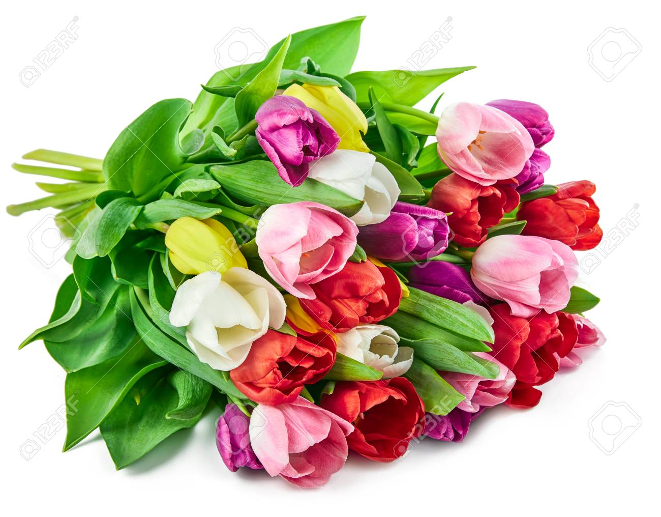 Spring Tulips Flowers Bouquet Romantic Greeting Gift For Birthday Stock Photo Picture And Royalty Free Image Image 97909591
