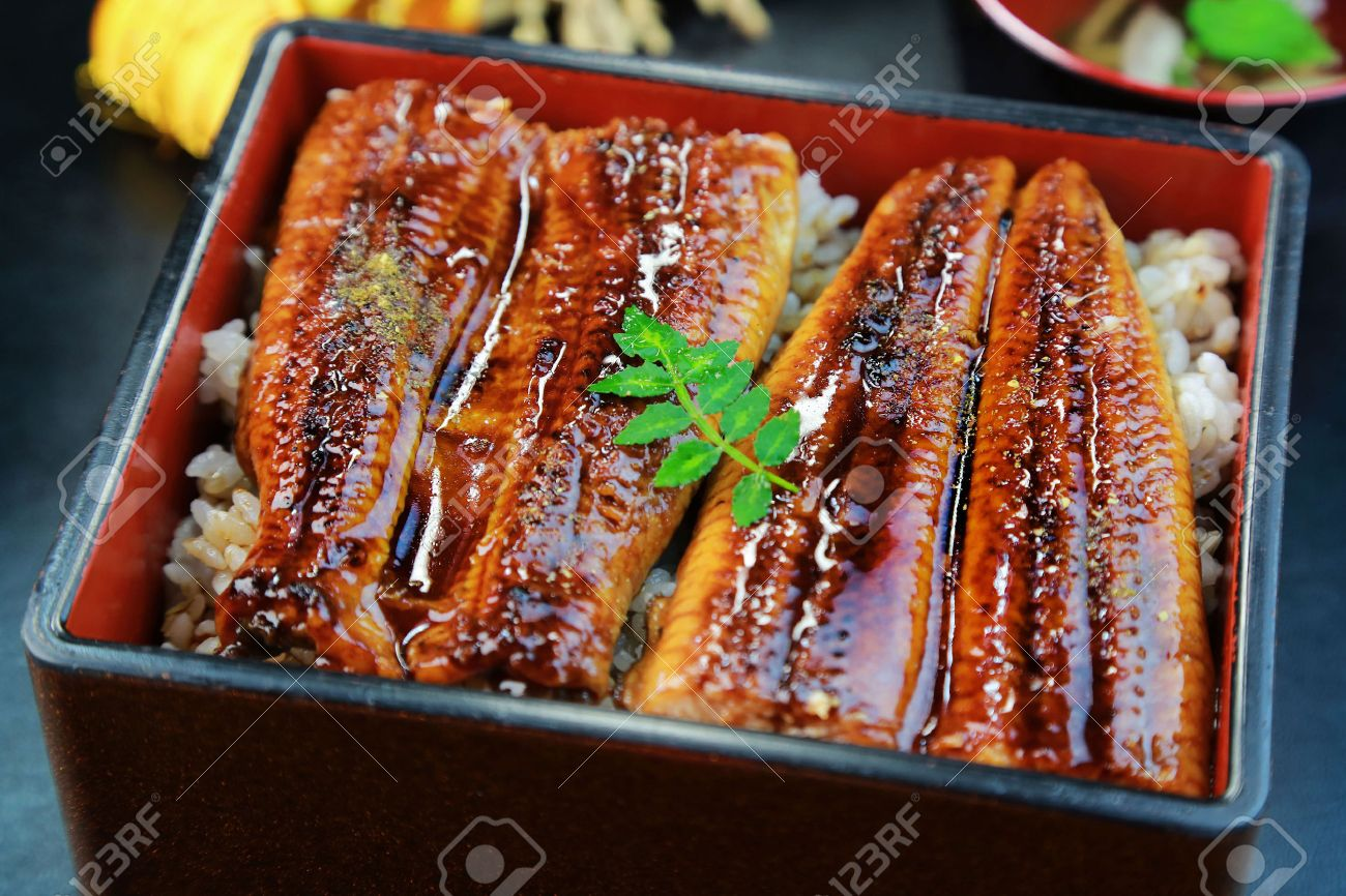 Japanese food, Unajyu, Eel and rice in a lacquered box - 38232659