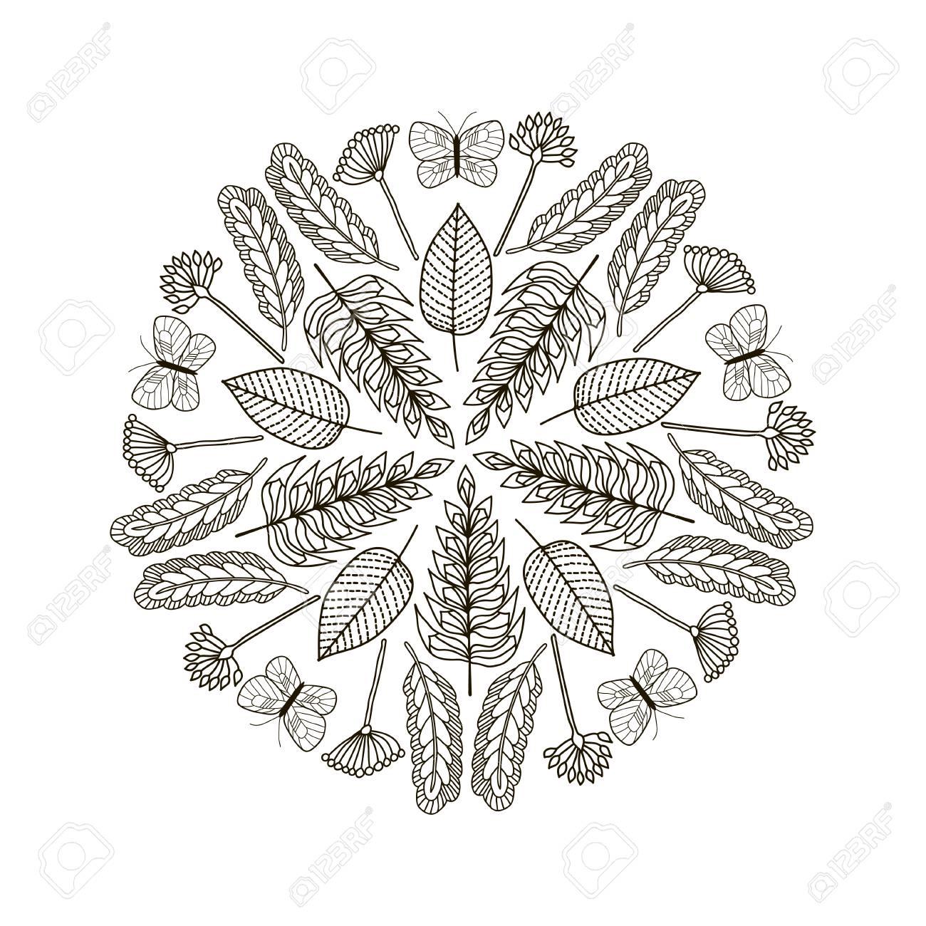 Dibujados A Mano Las Hojas Y Mariposas Fondo Círculo. En Blanco Y ...