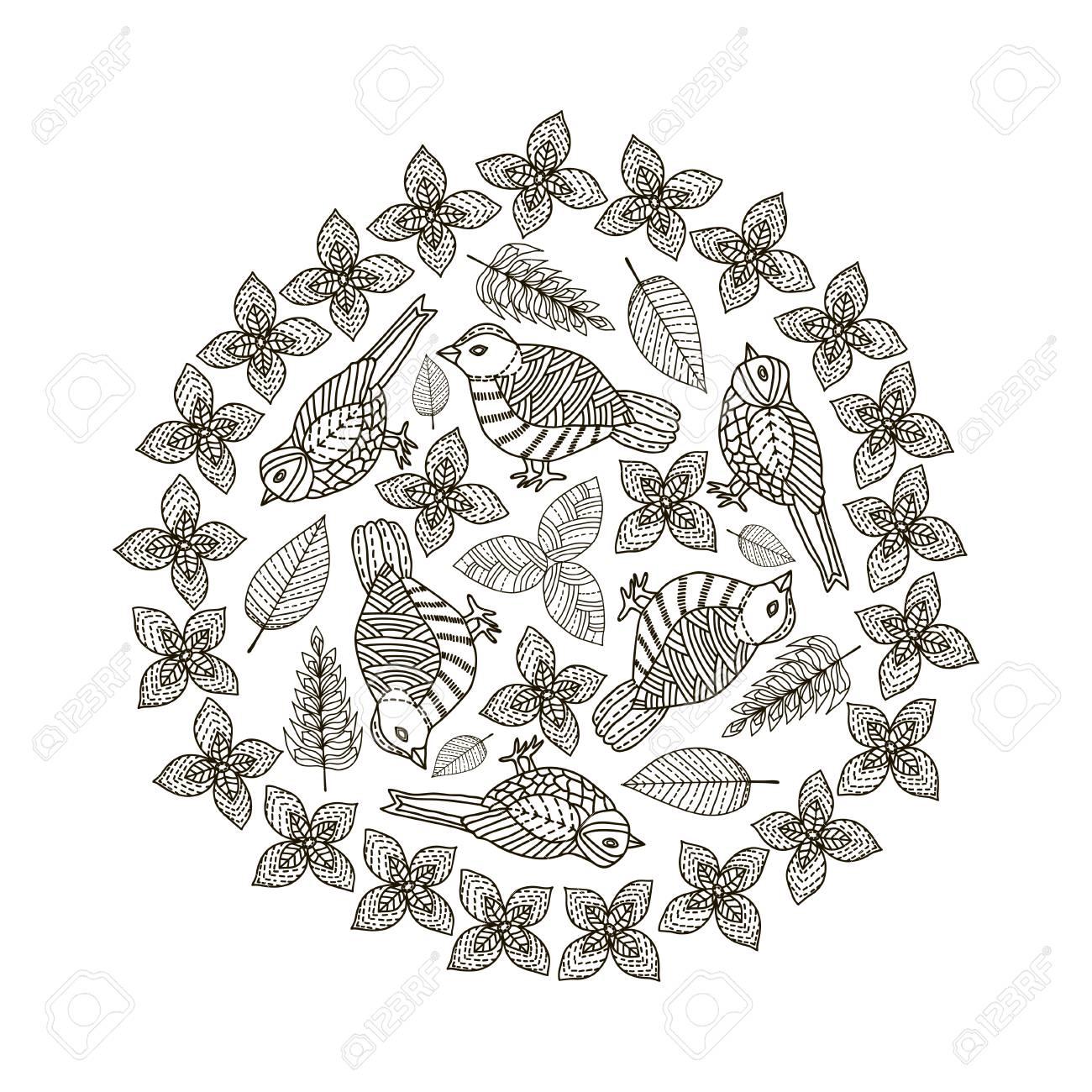 Dibujado A Mano Pájaros Y Hojas De Fondo Del Círculo. En Blanco Y ...