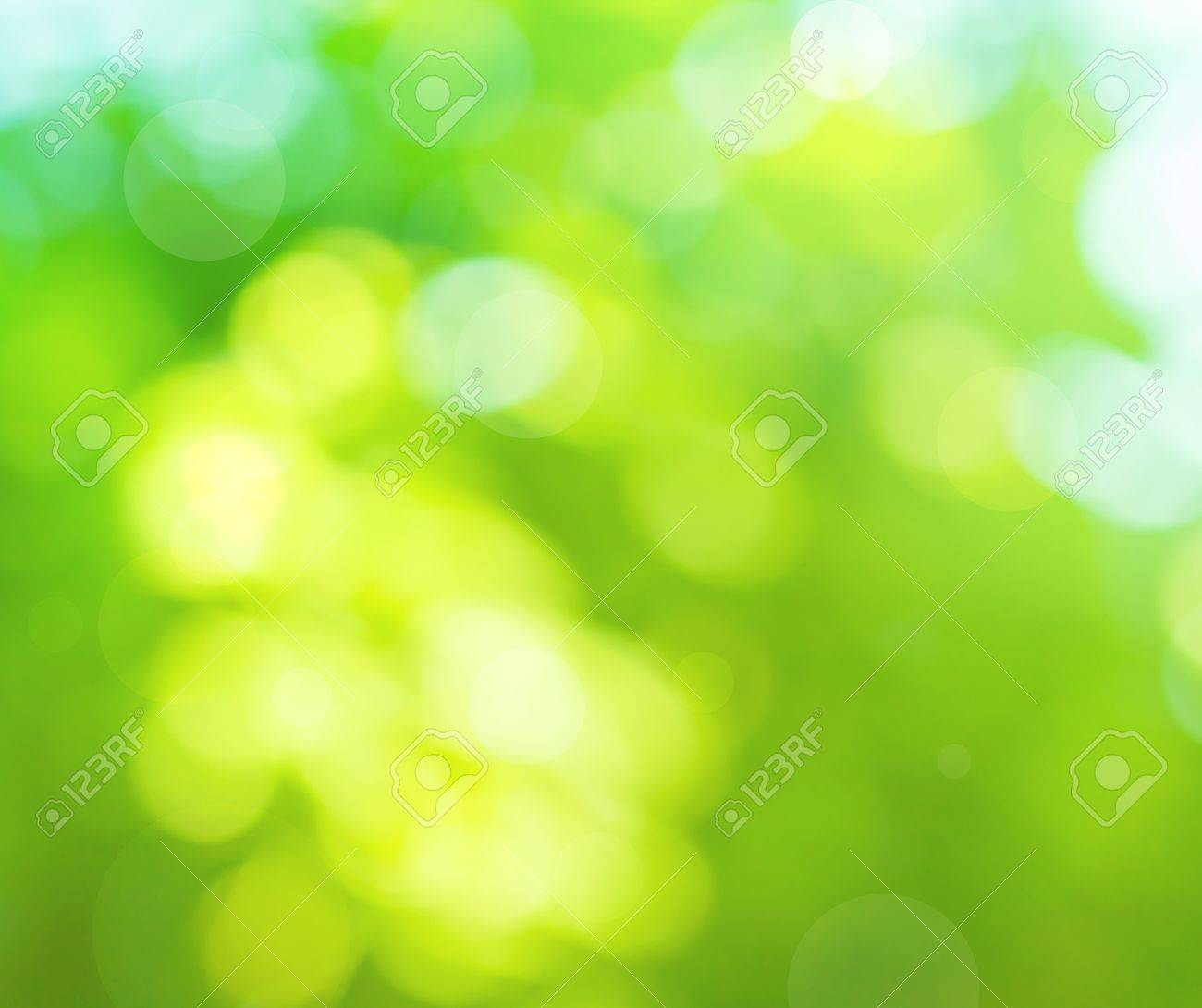 colorful blurred background in the green colors, the bokeh effect Stock Photo - 13645982
