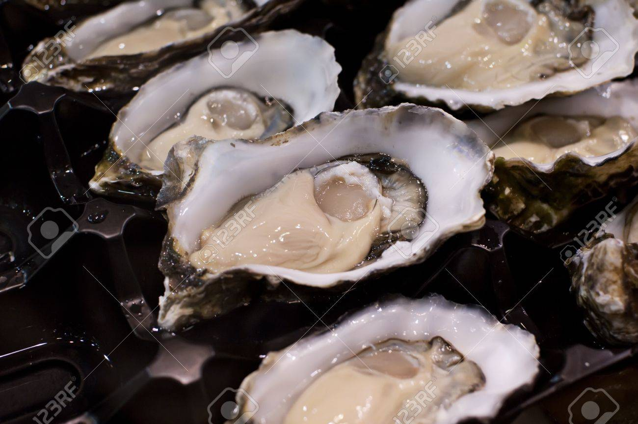 Rock Oysters Stock Photo - 11155339