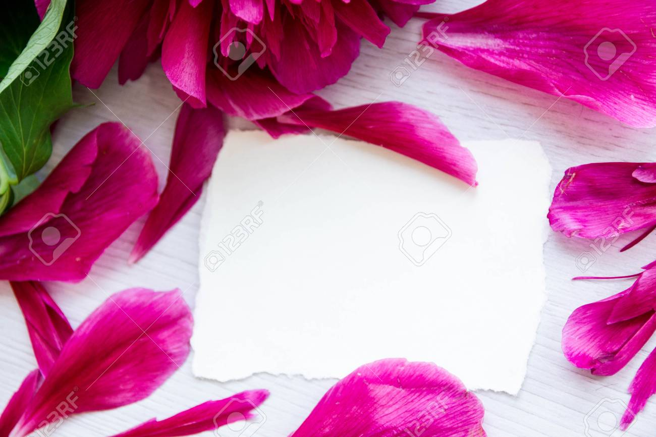 Beautiful Pink Peonies Flowers With A Blank Notebook On A Gray