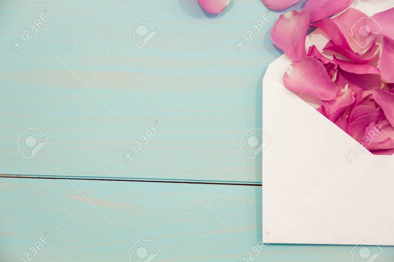 Blank White Post Cards Empty Postcard Postcrossing Love Letter