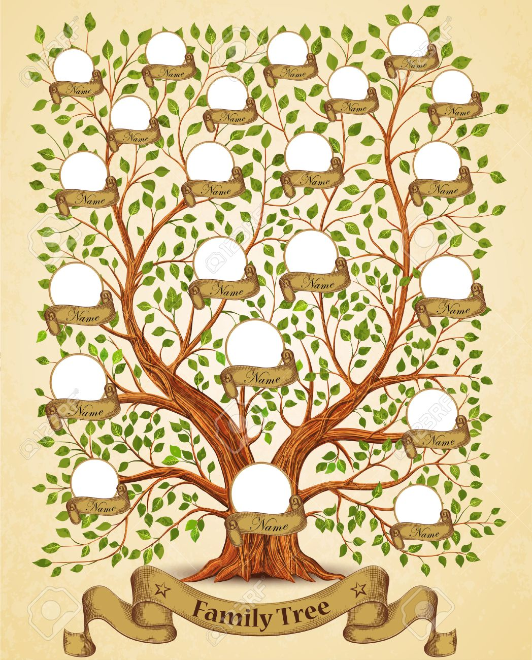 family tree template vintage vector illustration stock vector 54790915