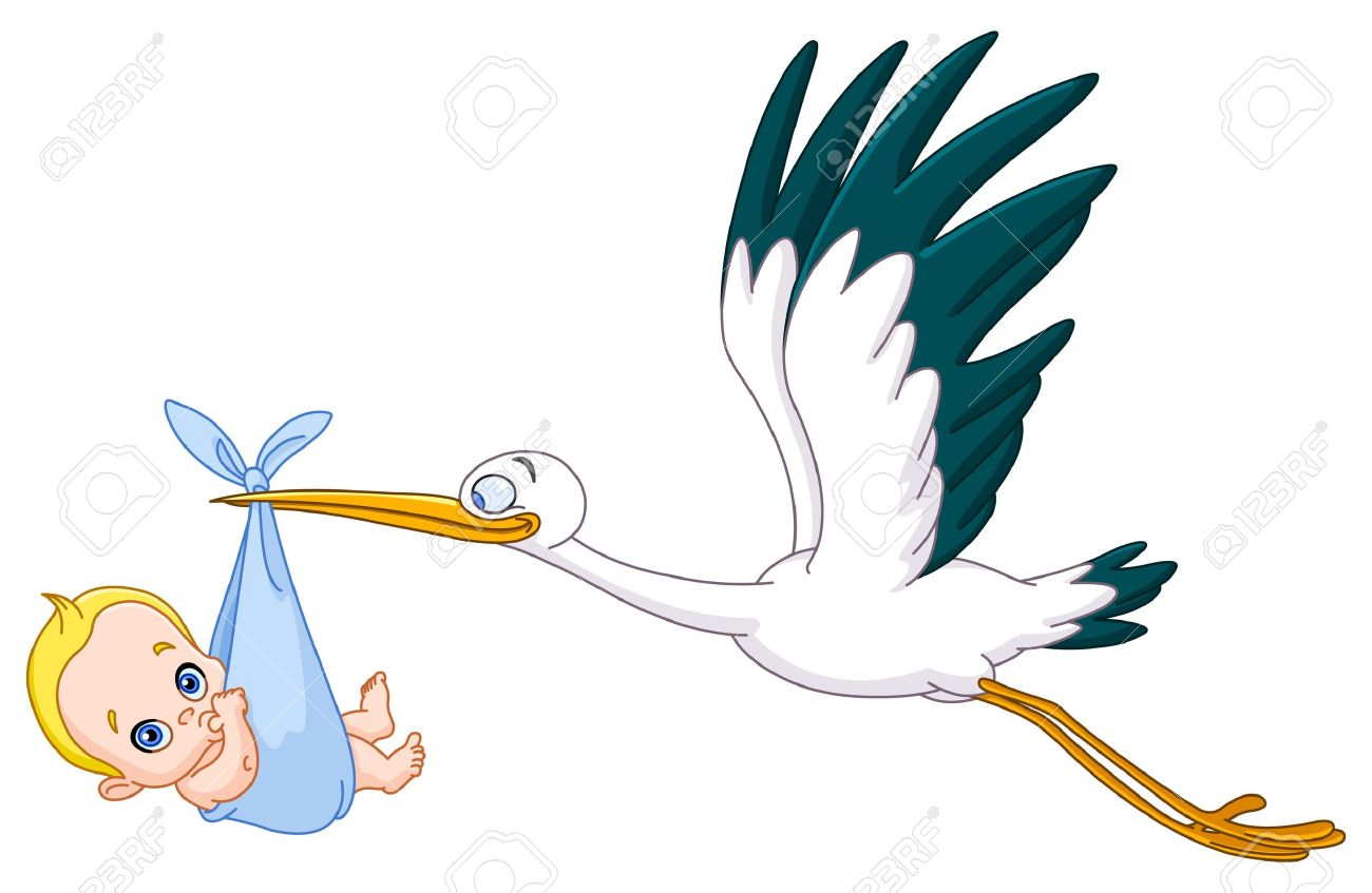7 314 stork stock illustrations cliparts and royalty free stork vectors rh 123rf com free clipart stork delivering baby free stock clipart