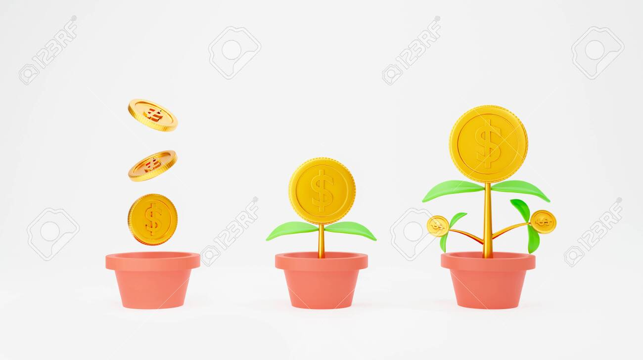 Money Tree Plant Isolated On White Background Financial Growth Stock Photo Picture And Royalty Free Image Image 148653604