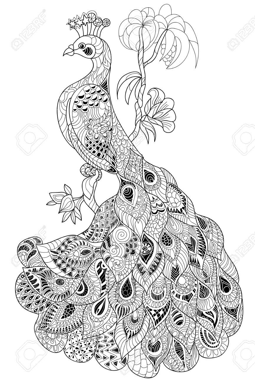 Zen-enredo Estilizado De Pavo Real. Dibujado A Mano Ilustración Del ...