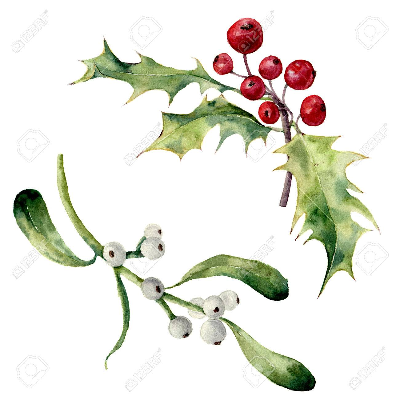 Image result for holly and mistletoe