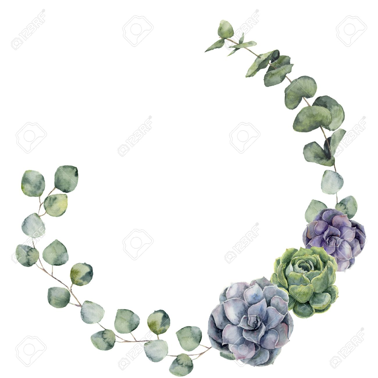 Watercolor Floral Border With Baby Silver Dollar Eucalyptus Stock Photo Picture And Royalty Free Image Image 65144892