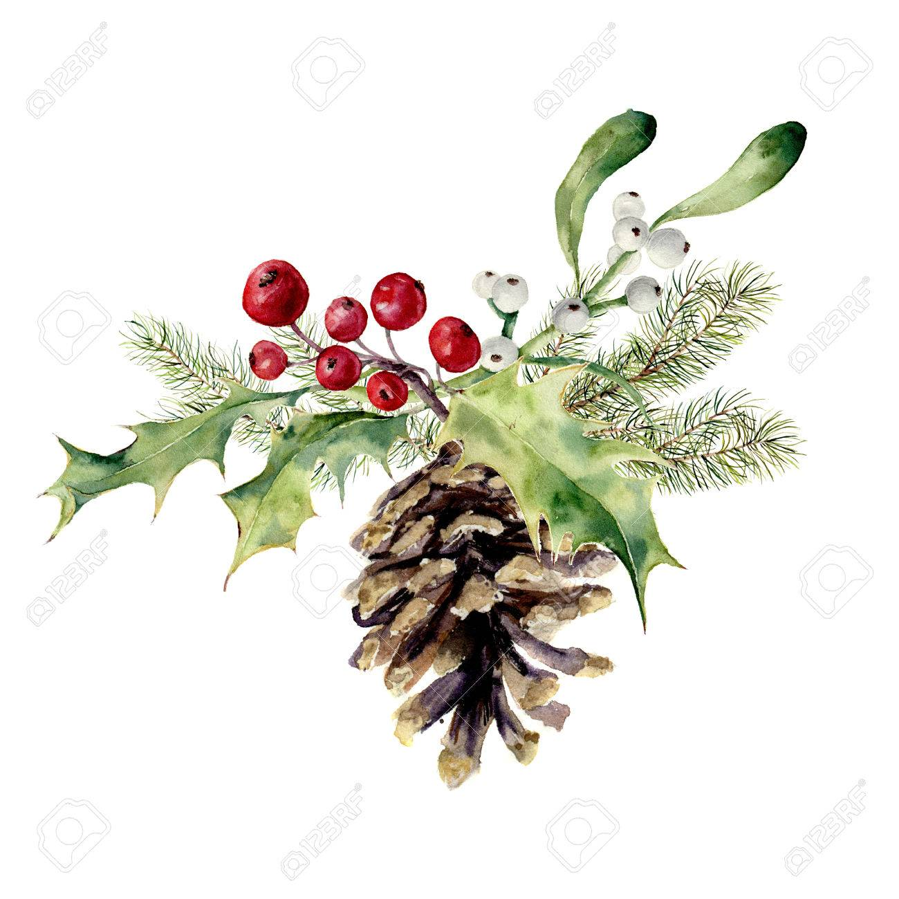 Watercolor fir cone with christmas decor. Pine cone with christmas tree branch, holly and mistletoe on white background. Party element for design, print. - 65145307
