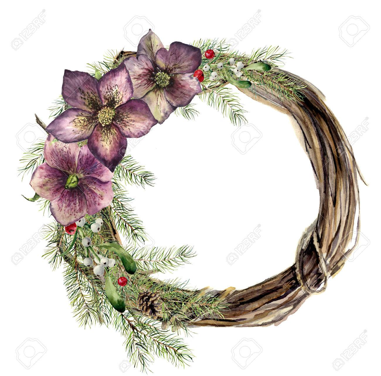 Watercolor Christmas Wreath With Hellebore Flower New Year Tree