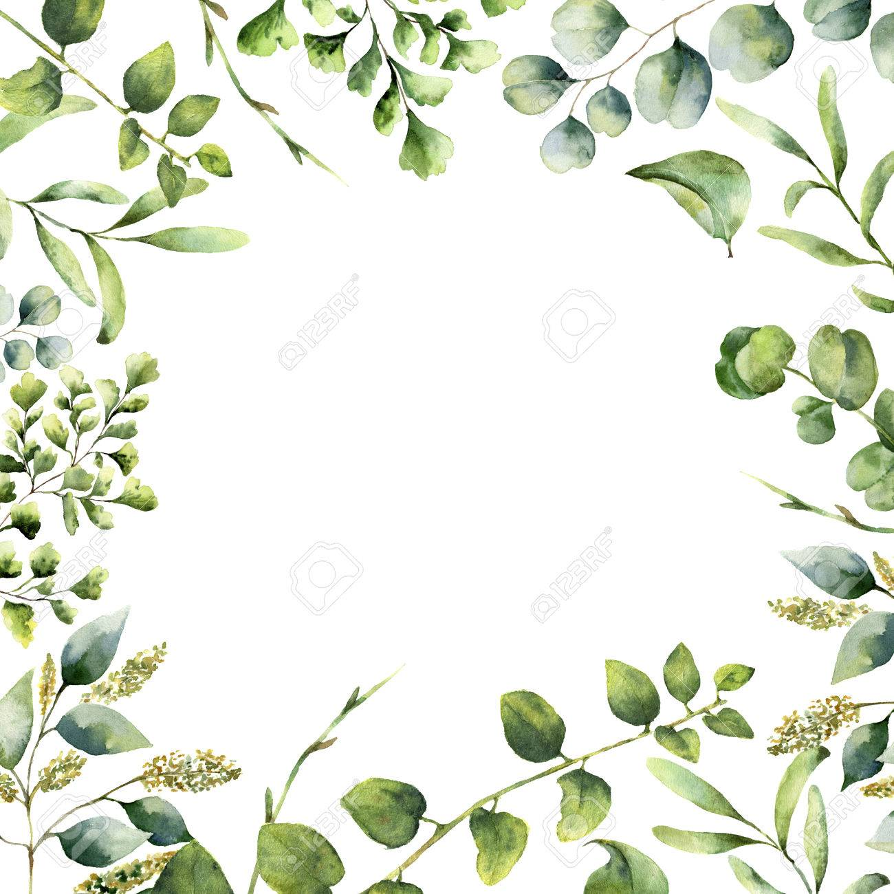 Watercolor floral frame. Hand painted plant card with eucalyptus, fern and spring greenery branches isolated on white background. Print for design or background. - 73393664