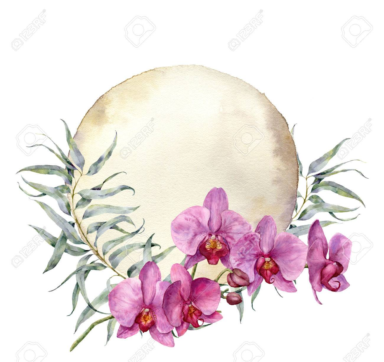 Watercolor Vintage Card With Orchids And Eucalyptus Leaves Hand Stock Photo Picture And Royalty Free Image Image 75388256