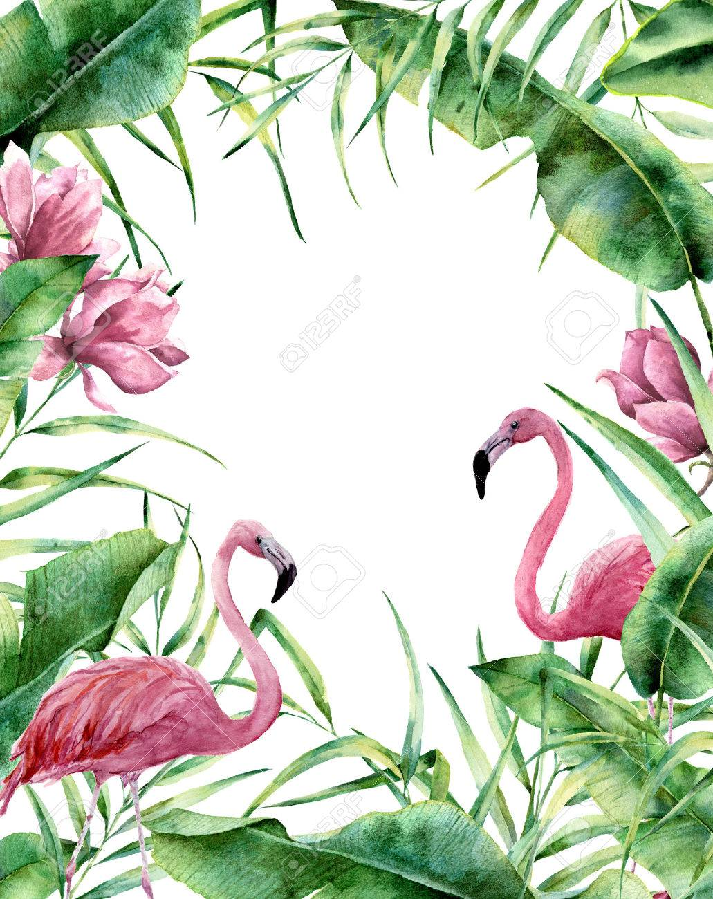 Watercolor tropical frame. Hand painted exotic floral border with palm tree leaves, banana branch, magnolia flowers and flamingo isolated on white background. For wedding and greeting design or print. - 77902771