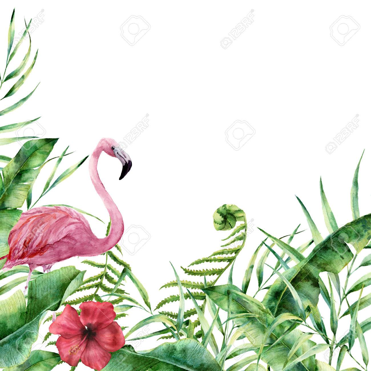 Watercolor tropical nature card. Hand painted floral frame with palm tree leaves, fern branch, banana and magnolia leaves, hibiscus flower and flamingo isolated on white background. Greeting design - 78903993