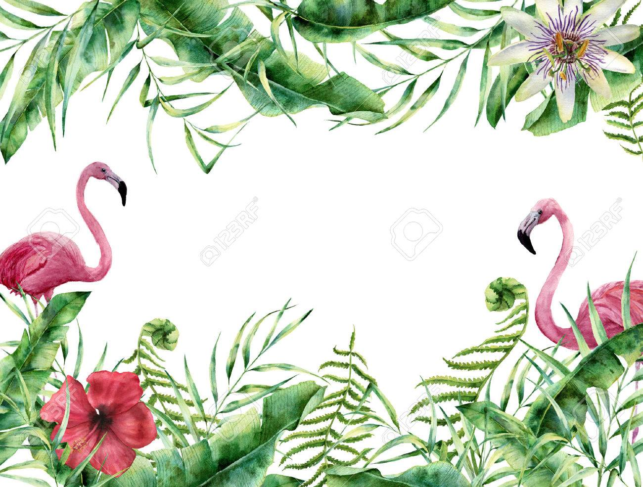 Aquarell Tropische Blumenkarte Mit Flamingo Hand Bemalte Sommer