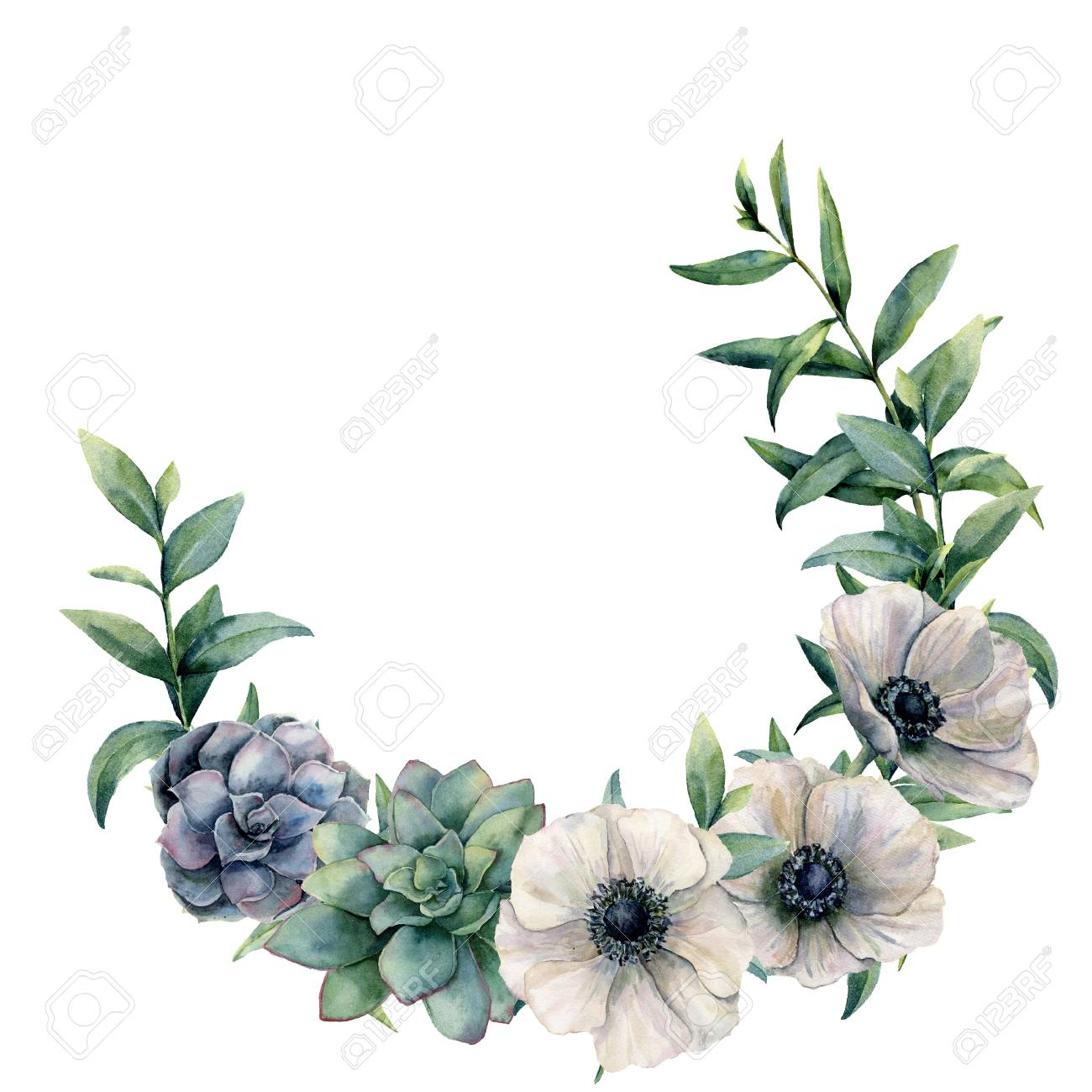 Watercolor Anemone And Succulent Wreath Hand Painted White Stock Photo Picture And Royalty Free Image Image 99287681
