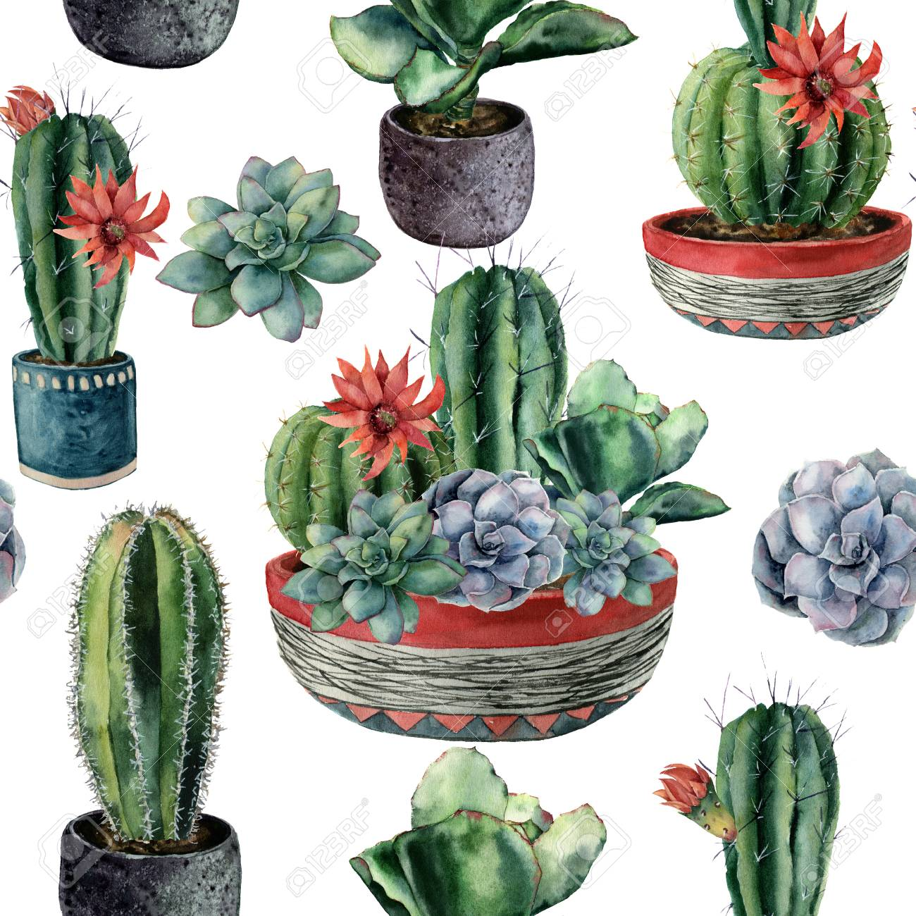 Watercolor Cactus Seamless Pattern Hand Painted Cereus Echeveria Stock Photo Picture And Royalty Free Image Image 99287691