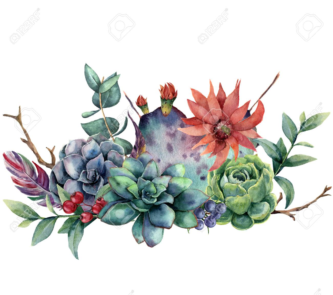Watercolor Floral Bouquet With Cactus And Flower. Hand Painted ...