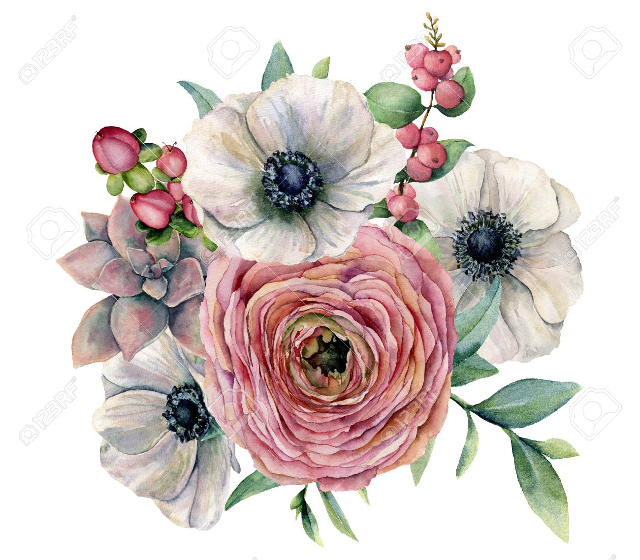 Watercolor Succulent Ranunculus And Anemone Bouquet Hand Painted Stock Photo Picture And Royalty Free Image Image 101010165
