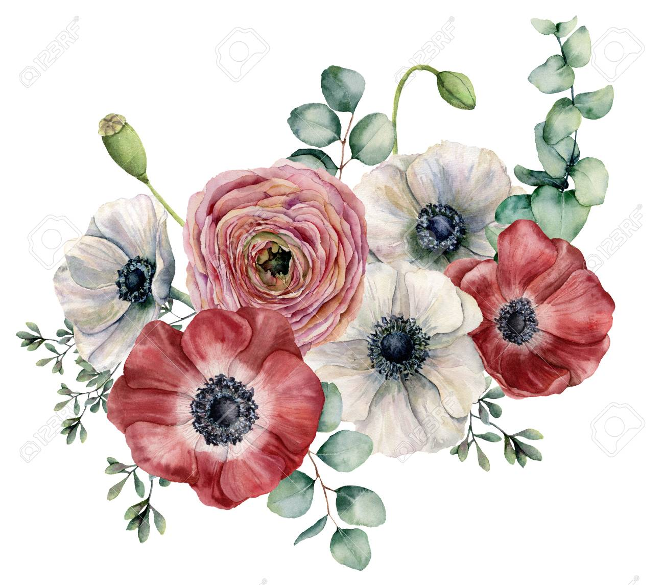 Watercolor Ranunculus And Anemone Bouquet Hand Painted Red And Stock Photo Picture And Royalty Free Image Image 102874336