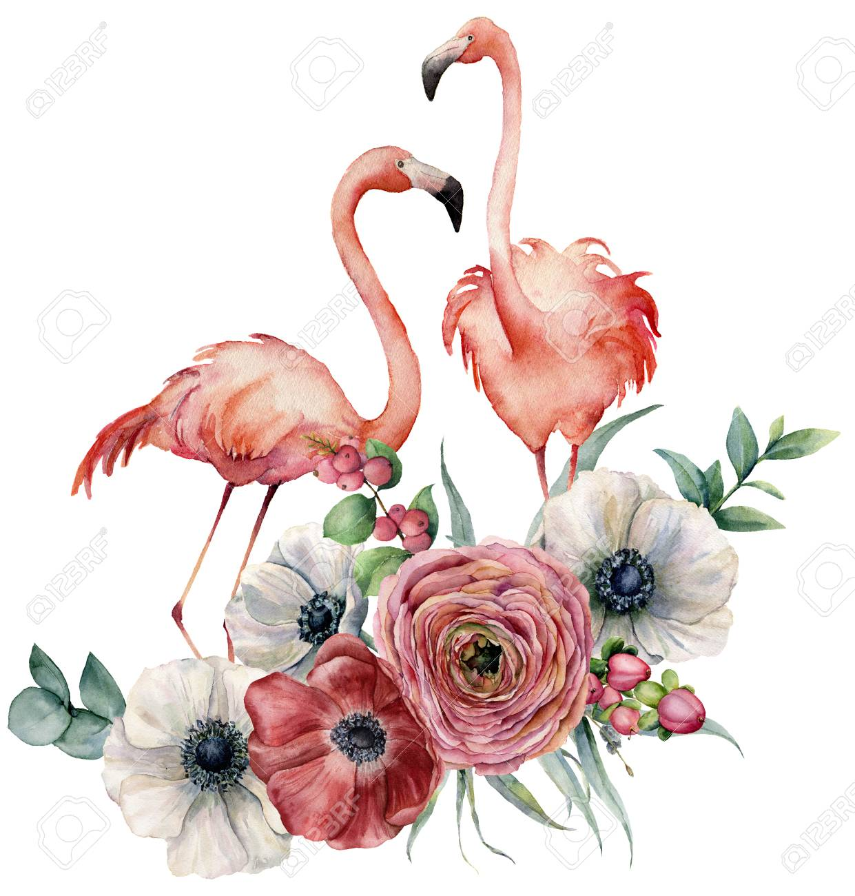 Watercolor flamingo with ranunculus bouquet. Hand painted exotic birds with anemone, eucalyptus leaves and branch isolated on white background. Wildlife illustration for design, print or background. - 103371506