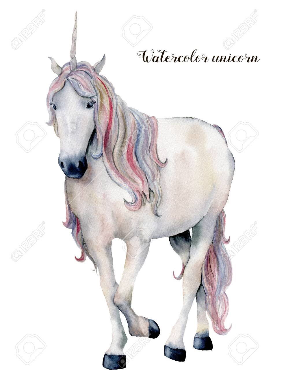 Watercolor White Unicorn With Rainbow Hair Hand Painted Magic Stock Photo Picture And Royalty Free Image Image 105292527