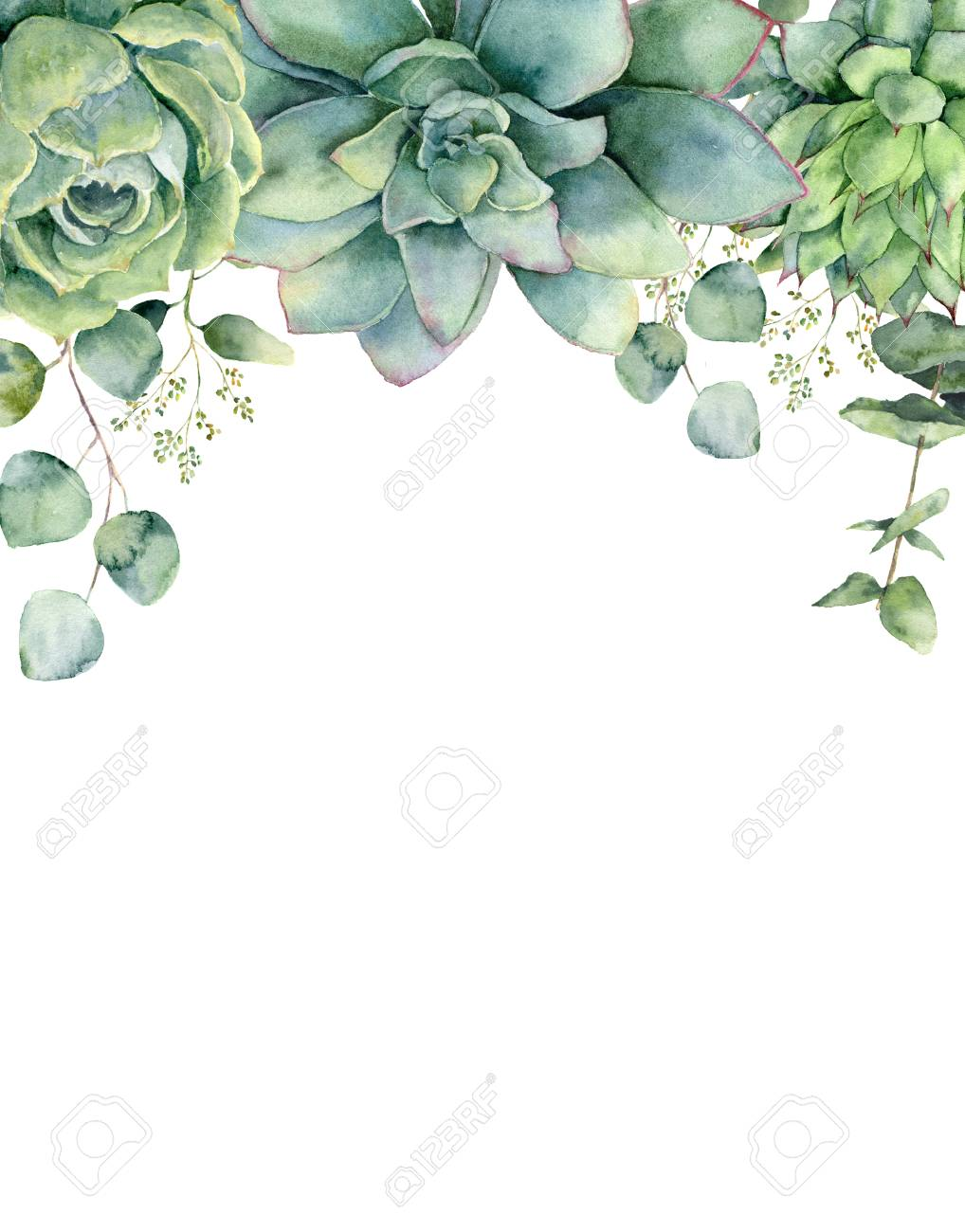 Watercolor card with succulents and eucalyptus leaves. Hand painted eucalyptus branch, green succulents isolated on white background. Floral botanical illustration for design, print or background. - 106513260