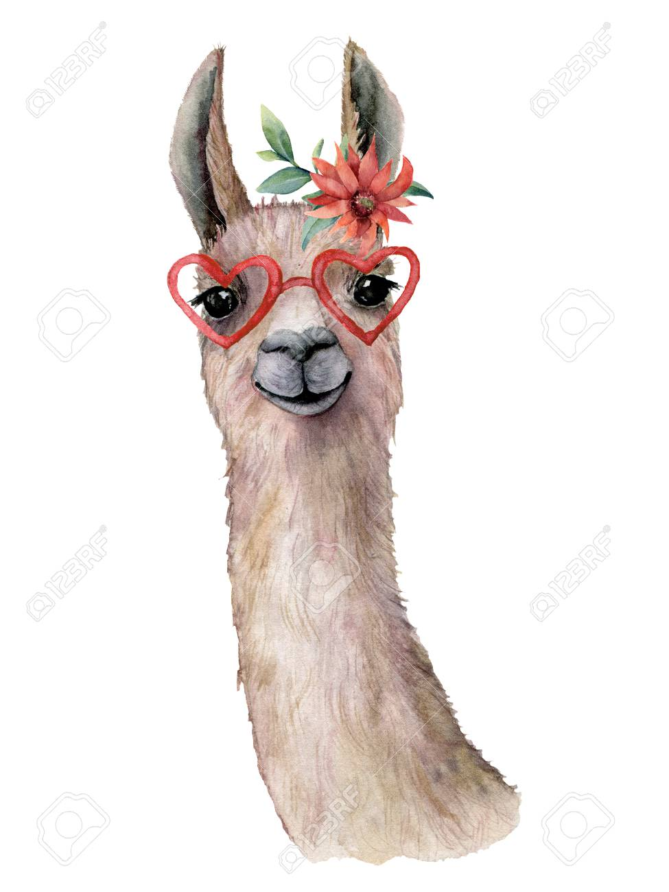 Watercolor card with llama, flower and sunglasses. Hand painted beautiful illustration with animal, red flower and sunglasses isolated on white background. For design, print, fabric or background. - 116174936
