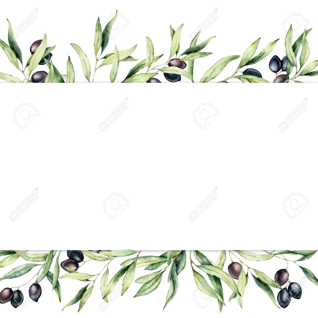 Watercolor border with black olive berries and branch. Hand painted botanical banner with olives isolated on white background. Floral illustration for design, print, fabric or background. - 128613335