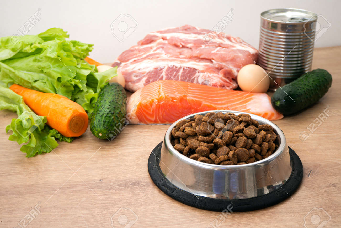 Dry pet dog food with natural ingredients. Raw meat, fish, vegetables, eggs and salad near bowl with dry pet feed. concept of a correct balanced and healthy nutrition for pet, close up - 159864123