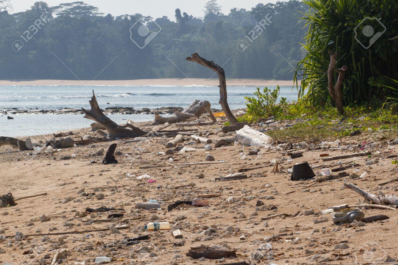 汚いビーチ小アンダマン島インド洋プラスチックだらけに。沿岸生態系 ...