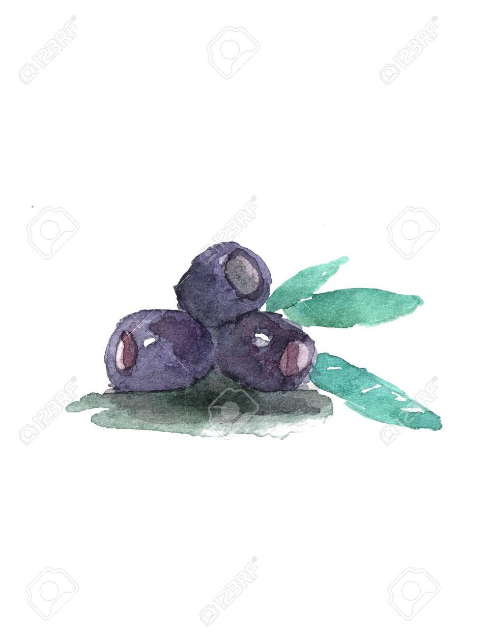 Schwarz Drei Oliven Urlaub Auf Weißem Hintergrund. Isolierte Gemüse ...