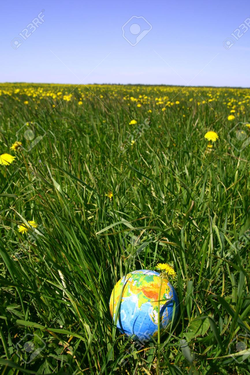 globe of planet earth in green grass Stock Photo - 5956157