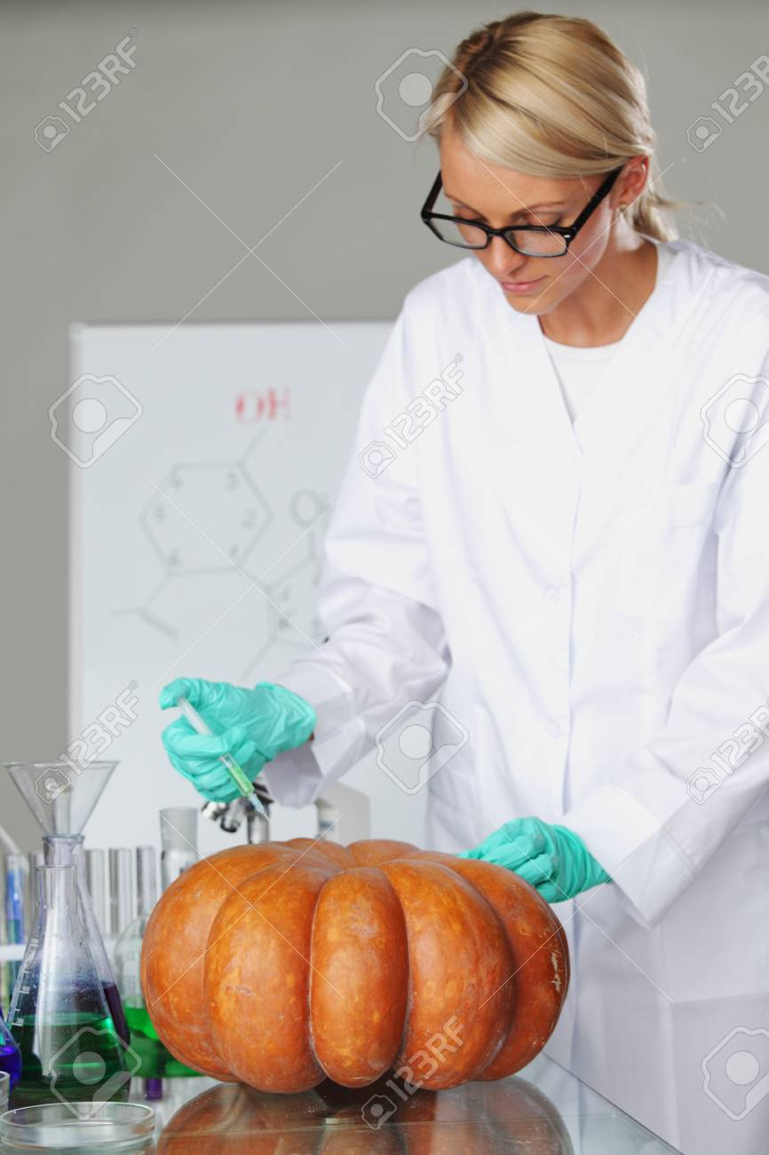 Scientist conducting genetic experiment with pumpkin Stock Photo - 10705553