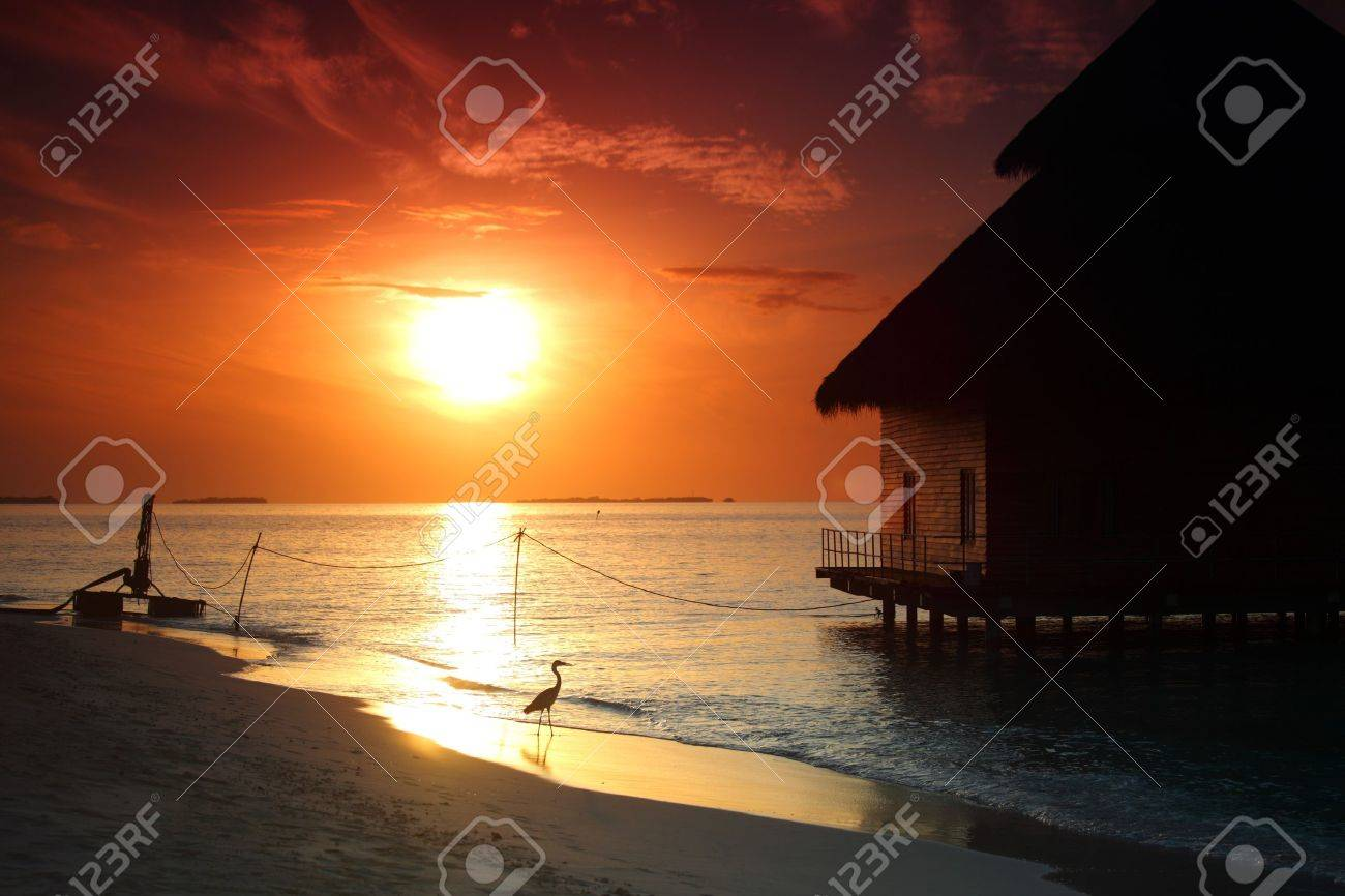 resort maldivian houses on sunrise Stock Photo - 10895906