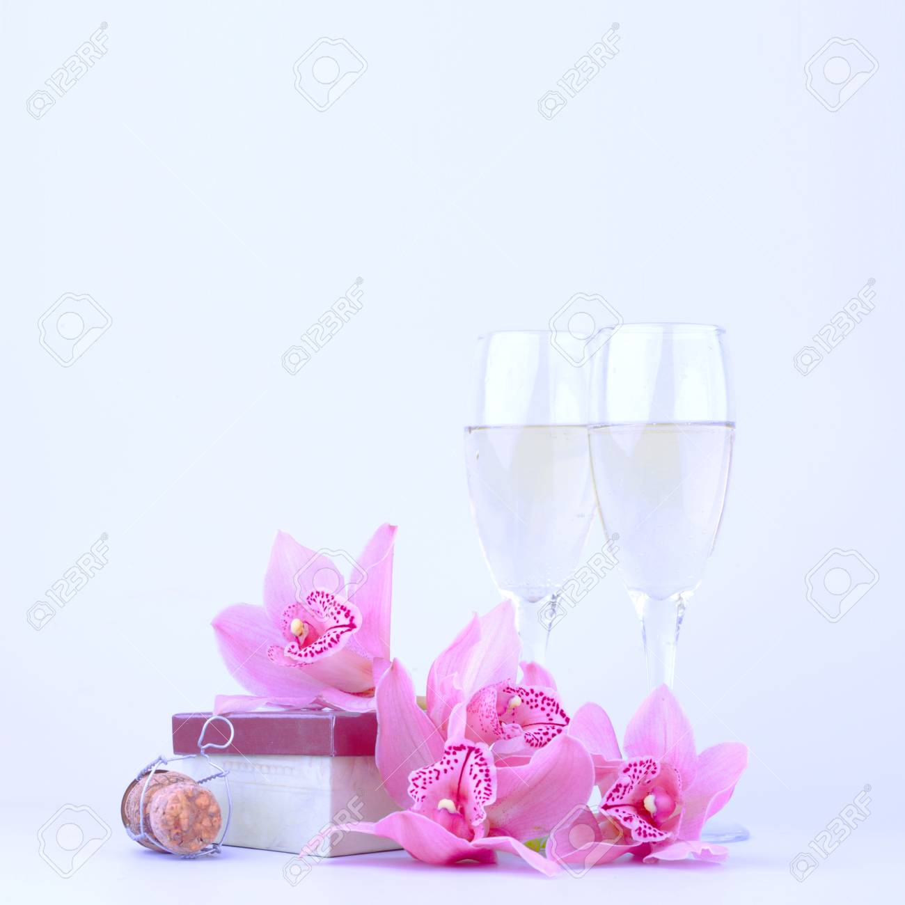 beautiful pink orchid against blue background Stock Photo - 13883737