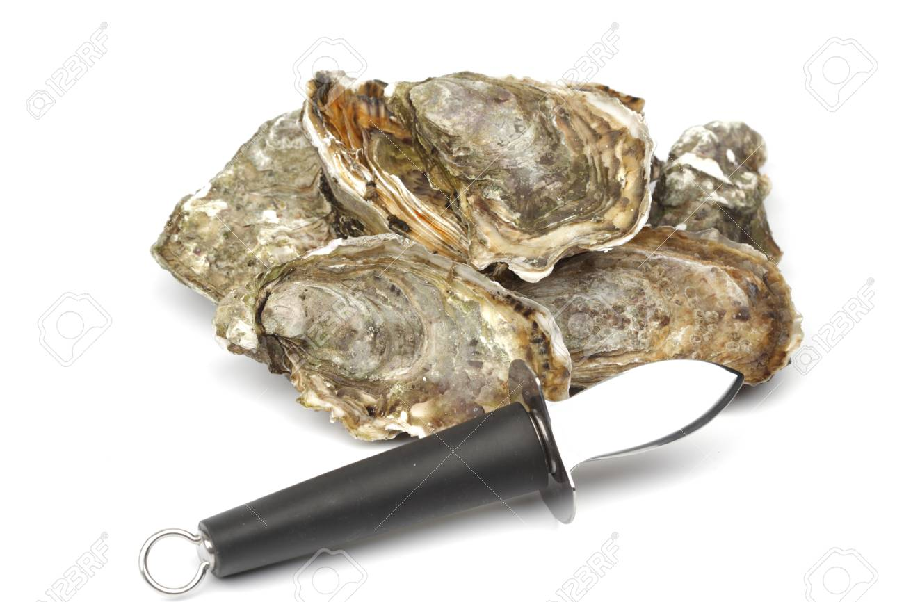 Oysters and knife isolated on white background Stock Photo - 18639122