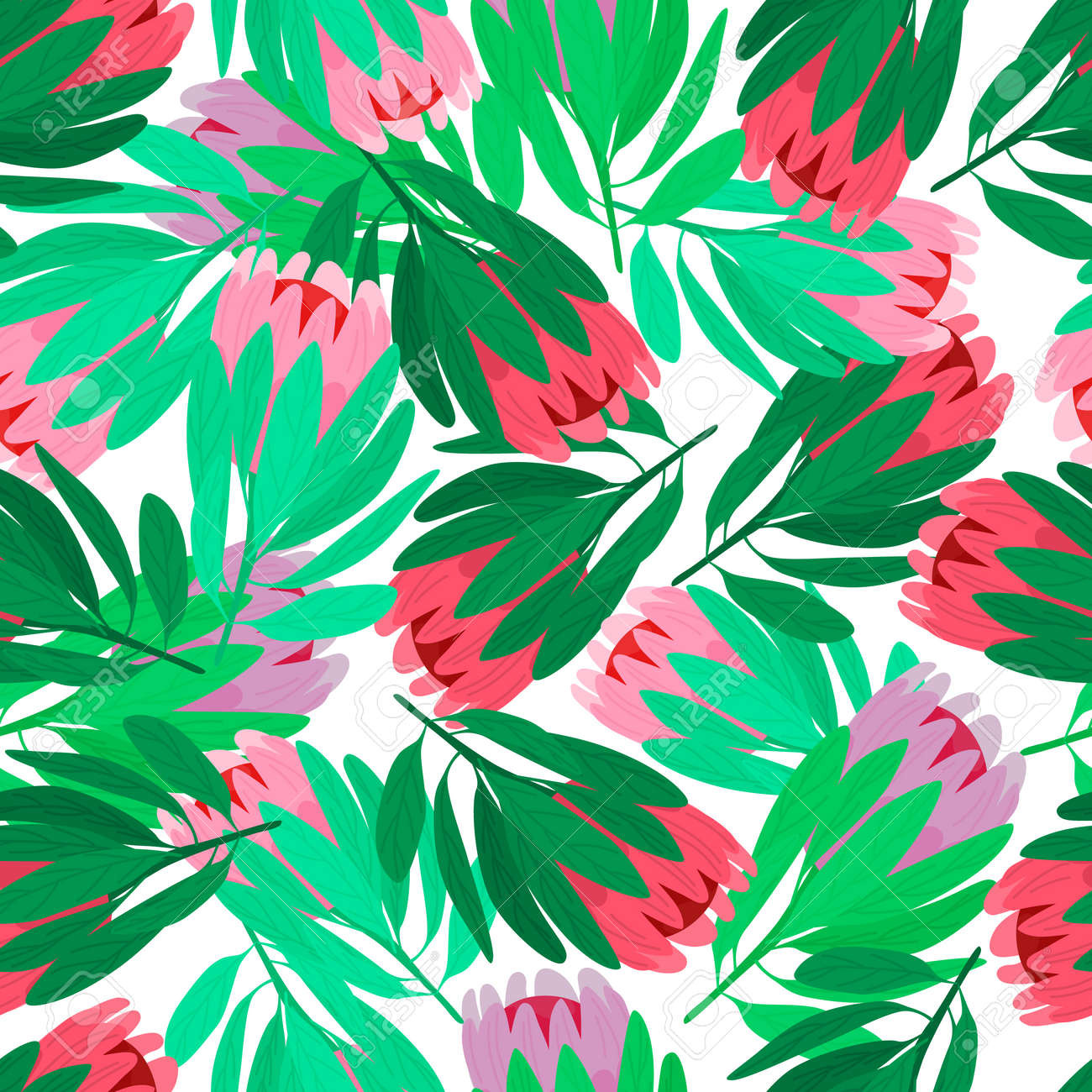 Nature seamless pattern with red and pink protea flowers elements. Isolated backdrop. Green leaves. Designed for fabric design, textile print, wrapping, cover. Vector illustration. - 169017090