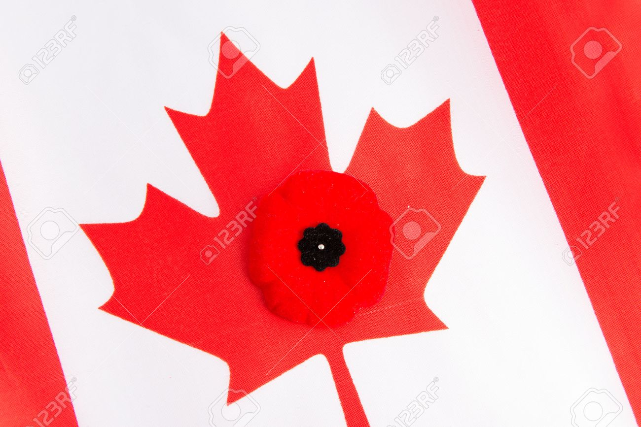 Canadian Flag And A Red Poppy The Red Poppy Is The Canadian Sign Of