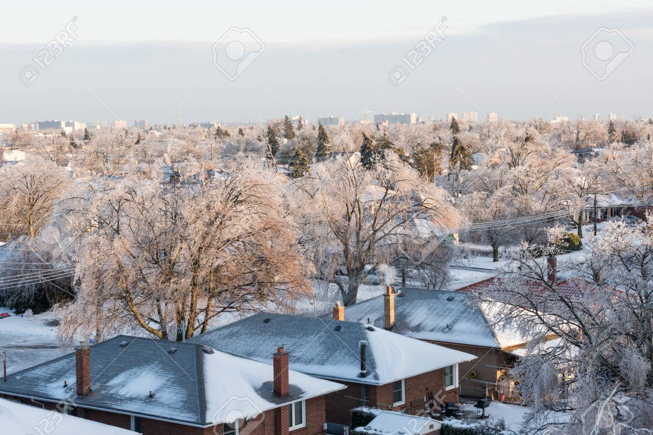 White Christmas In Canada.Details Of An Ice Storm In Toronto Canada Beautiful Ice On