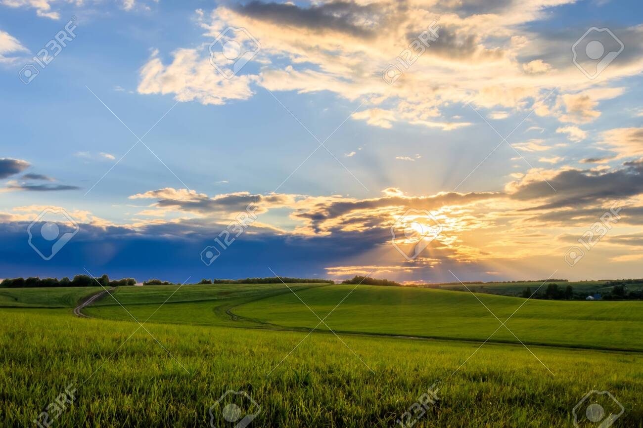 Sunset at cultivated land in the countryside on a summer evening with cloudy sky background. Landscape. - 120525076