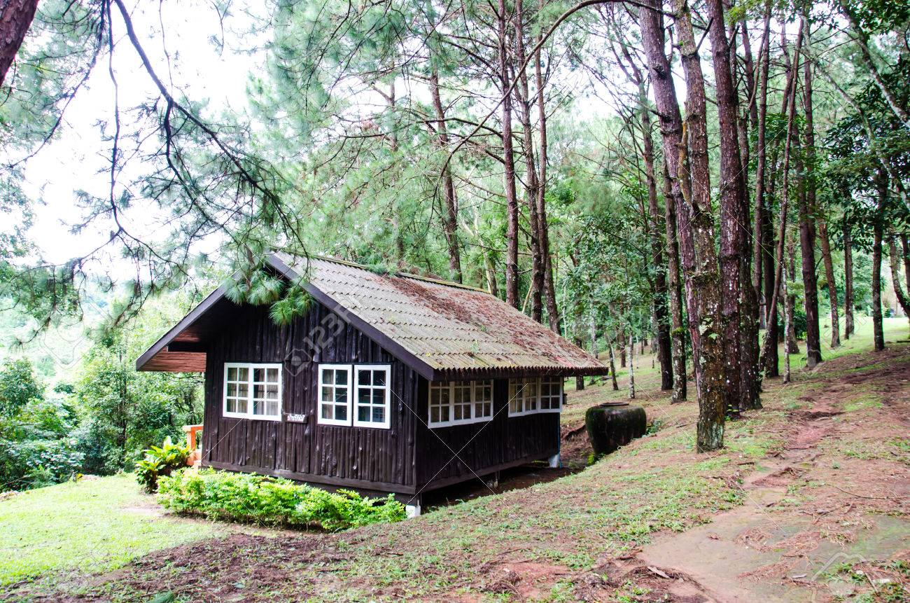 Stock photo typical wooden house in forest thailand
