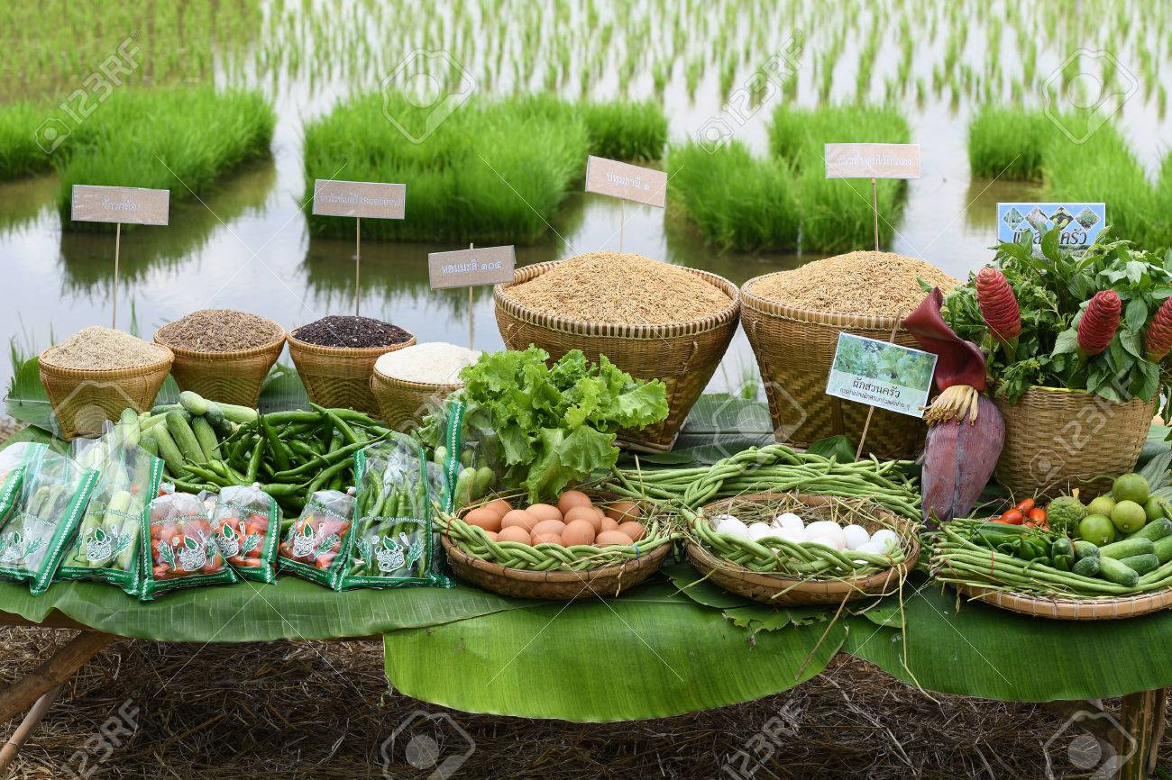 SINGBURI - THAILAND 18 : Agricultural products such as rice, beans, cucumbers, tomatoes, vegetables and egg of farmers at Bangrachan on October 18, 2016 in Singburi, Thailand. - 64637656