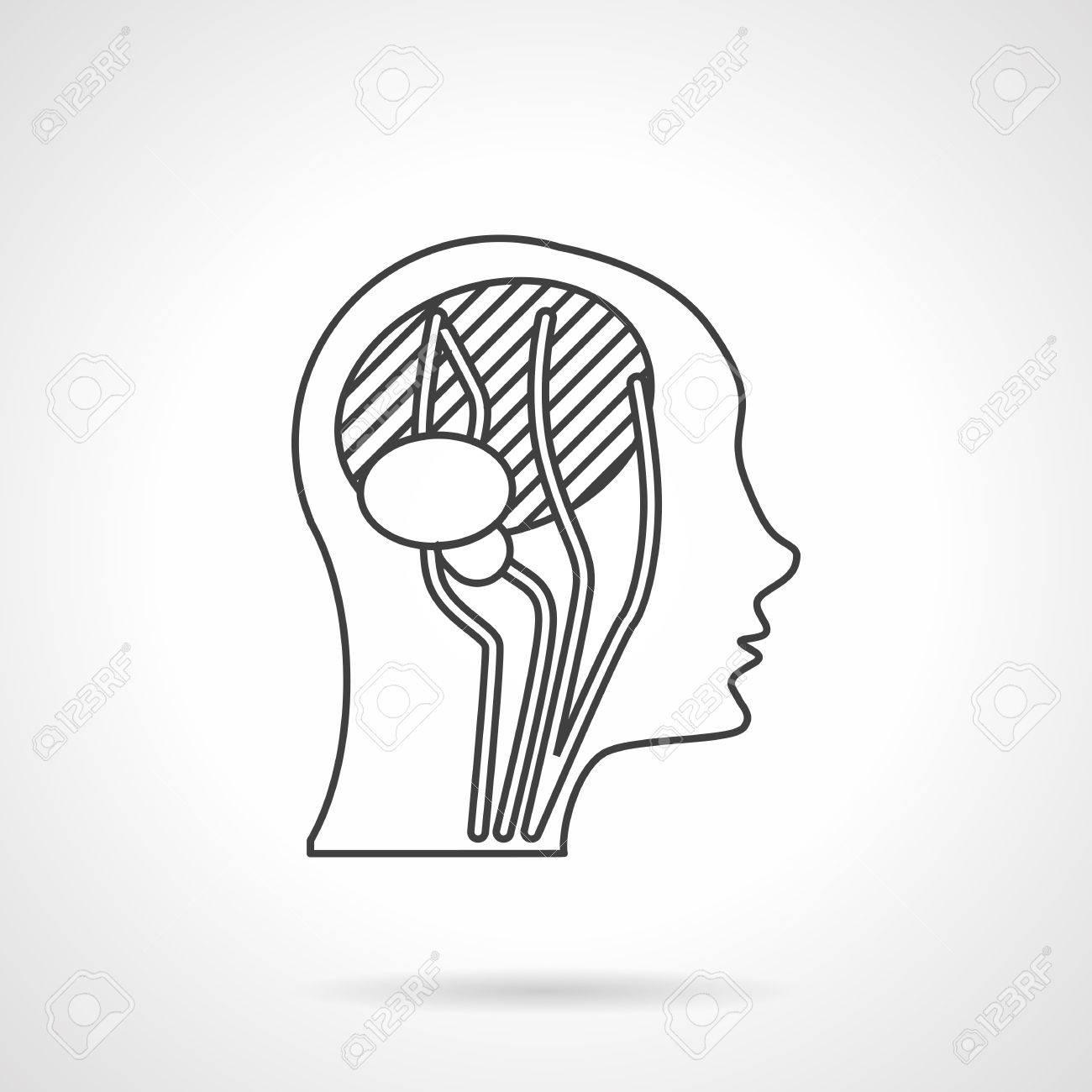Ausgezeichnet Blutgefäße Im Kopf Bilder - Menschliche Anatomie ...