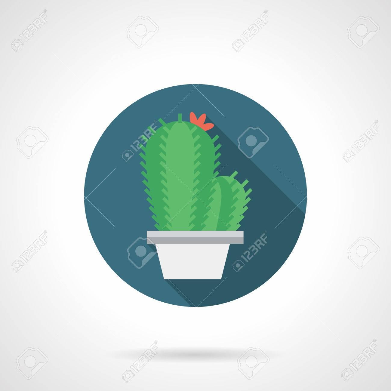 Planta De Interior En El Bote Blanco Con Una Larga Sombra. Cactus ...