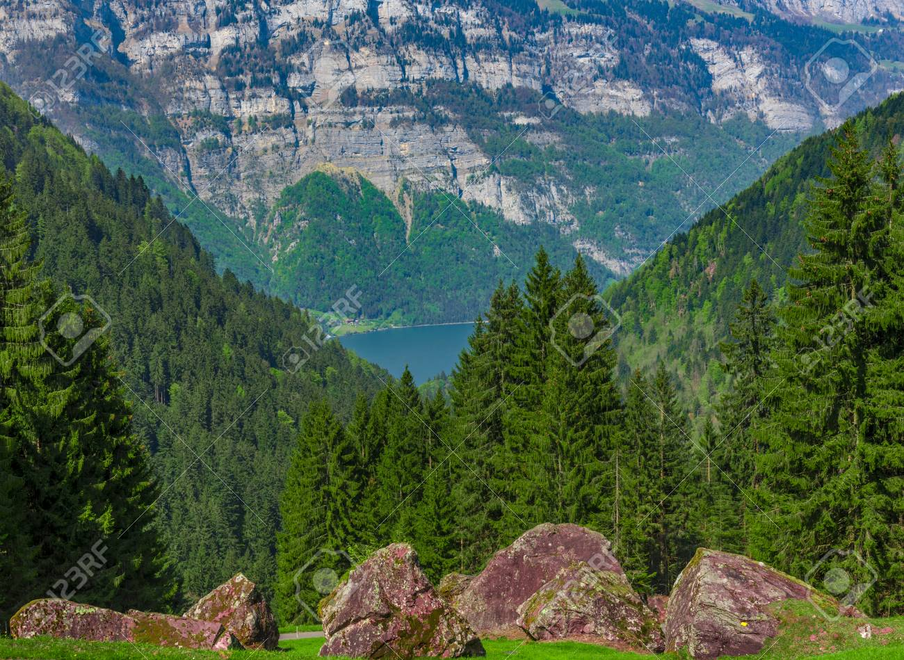 Mountain Rocks With Forest In The Background Beautiful Nature