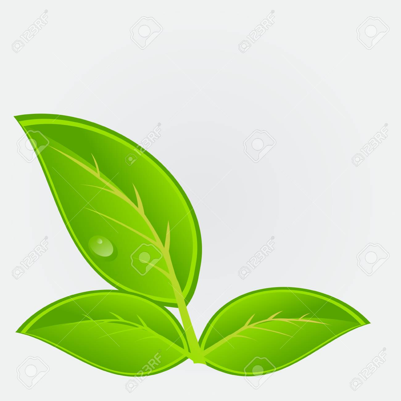 Environmental icon with plant  Vector illustration Stock Vector - 12709913